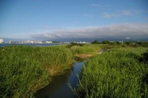 貝喰川河口 (400x266)